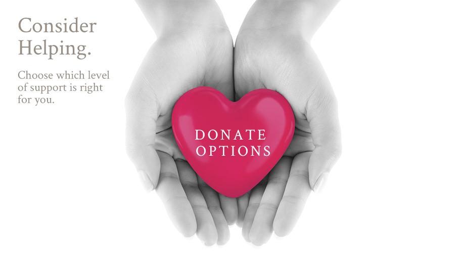 Donation Options